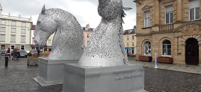 Kelso was chuffed to have the Kelpies visiting us! Wonderful!